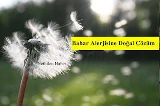 Bahar alerjisi belirtileri ve tedavisi