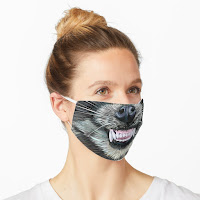 Link to Raccoon Face Mask