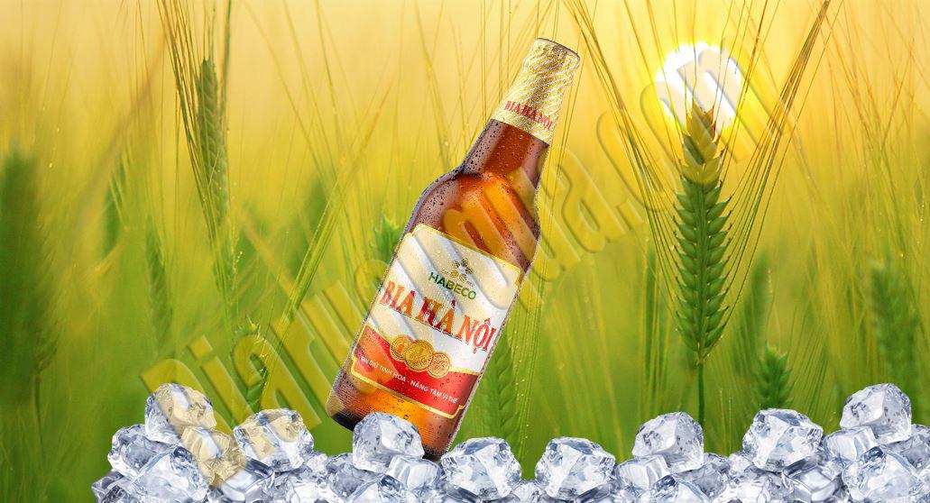 Bia chai Hà Nội 450ml
