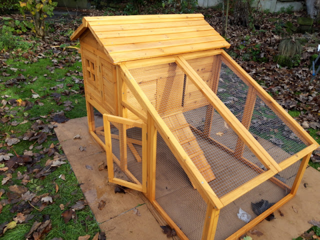 The finished duck house and run standing on the cardboard on the grass