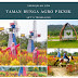 Menikmati Keindahan Bunga Bunga Agro Piknik Sei Temiang Batam