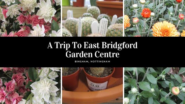 A Trip To East Bridgford Garden Centre