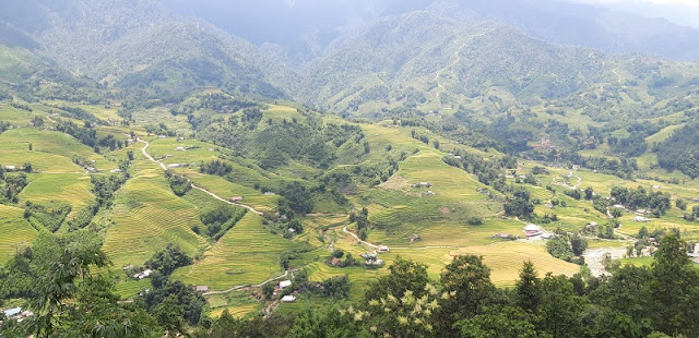 [Family Holiday] Ripe Rice Season In Sapa Makes A Great Family Destination