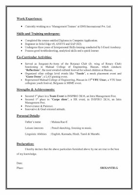 Marketing Executive Resume 2