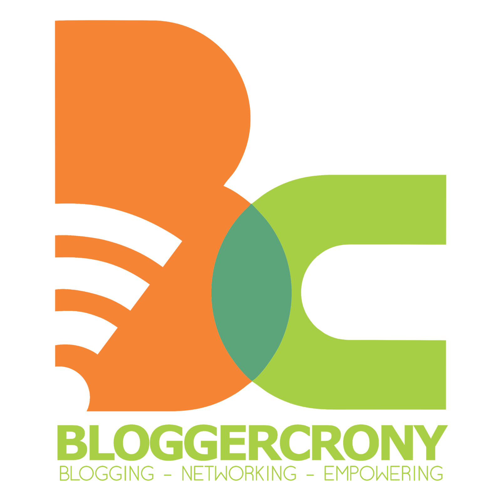 co-founder komunitas Blogggercrony Indonesia