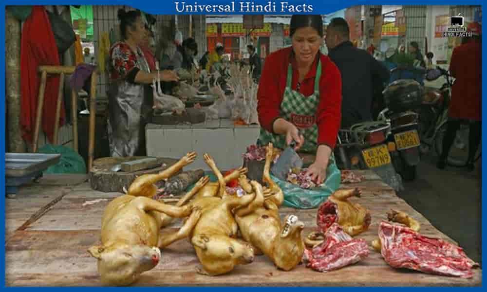 interesting facts about china, facts about china,रोचक तथ्य, amazing facts about china, different facts about china, fun facts about china, universalhindifacts