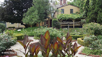 Cannas attract hummingbirds - Butler-McCook House and Garden, Hartford, CT