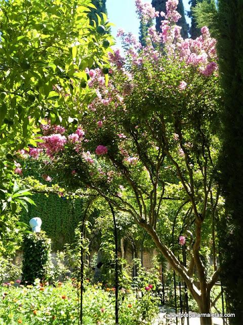 patios y fuentes Generalife Granada