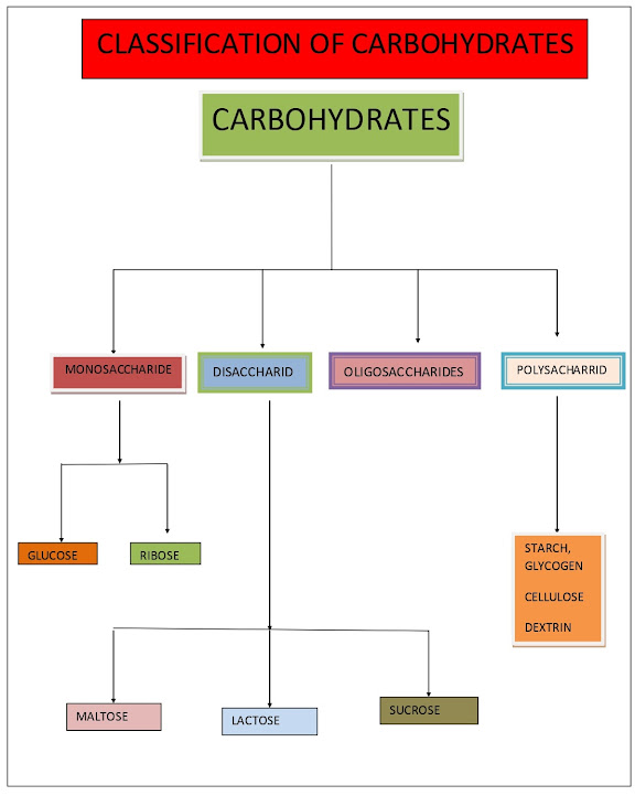 carbohydrates and its classification