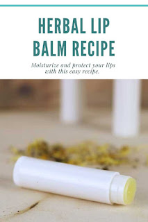 This is the best lip balm recipe!  How to make an herbal healing lip balm with calendula.  This lip balm diy is made with three types of herbs for healing.  It also has shea butter, cocoa butter, and beeswax to protect your lips. Easy home made lip balm. This lip balm recipe is easy to make.  How to make an all natural lip balm. Use beeswax lip balm to protect your lips.  Lip balm homemade recipe with herbs for natural beauty.  #lipbalm #diy #recipe #diybeauty #calendula #sheabutter #cocoabutter