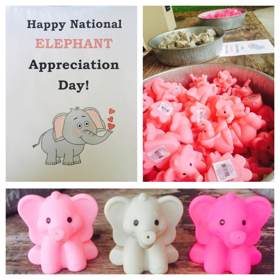 National Elephant Appreciation Day Wishes Photos