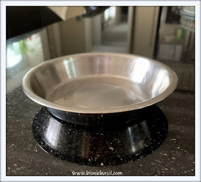 Top Tips For Cat Pawrents ©BionicBasil® Stainless Steel Cat Bowl