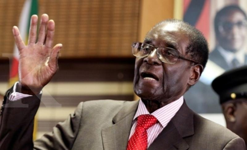 Mengenal Kuliner Mugabe: Makanan Sehat sampai Daging Gajah dan Singa