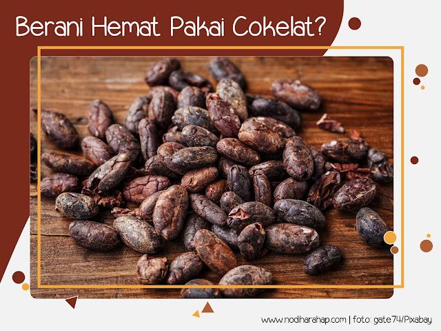 Kulit Cokelat Pengganti Batubara