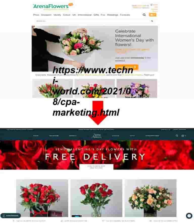 الصفحة الرئيسية للمتجر عبر الإنترنت