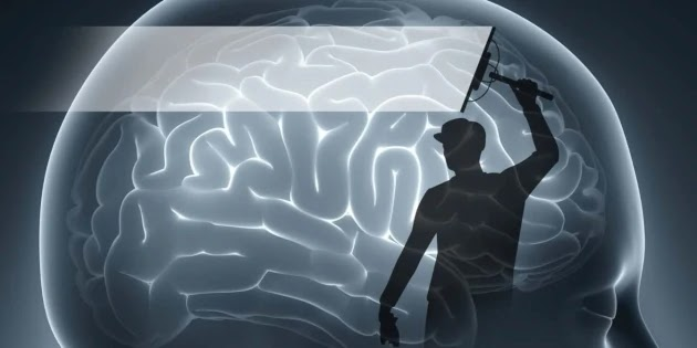 What's Your Dominant Brain Function?