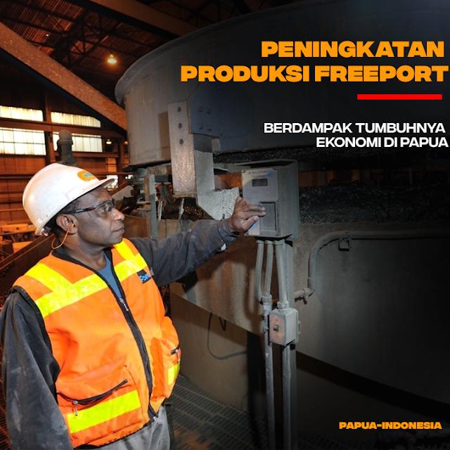 Peningkatan Produksi PT Freeport Berdampak Pada Pertumbuhan Ekonomi Papua