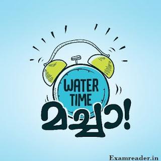 पानी पीने का सही समय क्या है ?