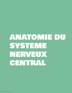 ANATOMIE DU SYSTEME NERVEUX CENTRAL