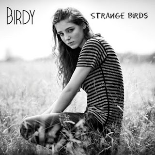 strange brids