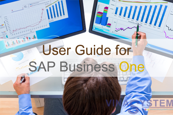User guide for SAP Business One