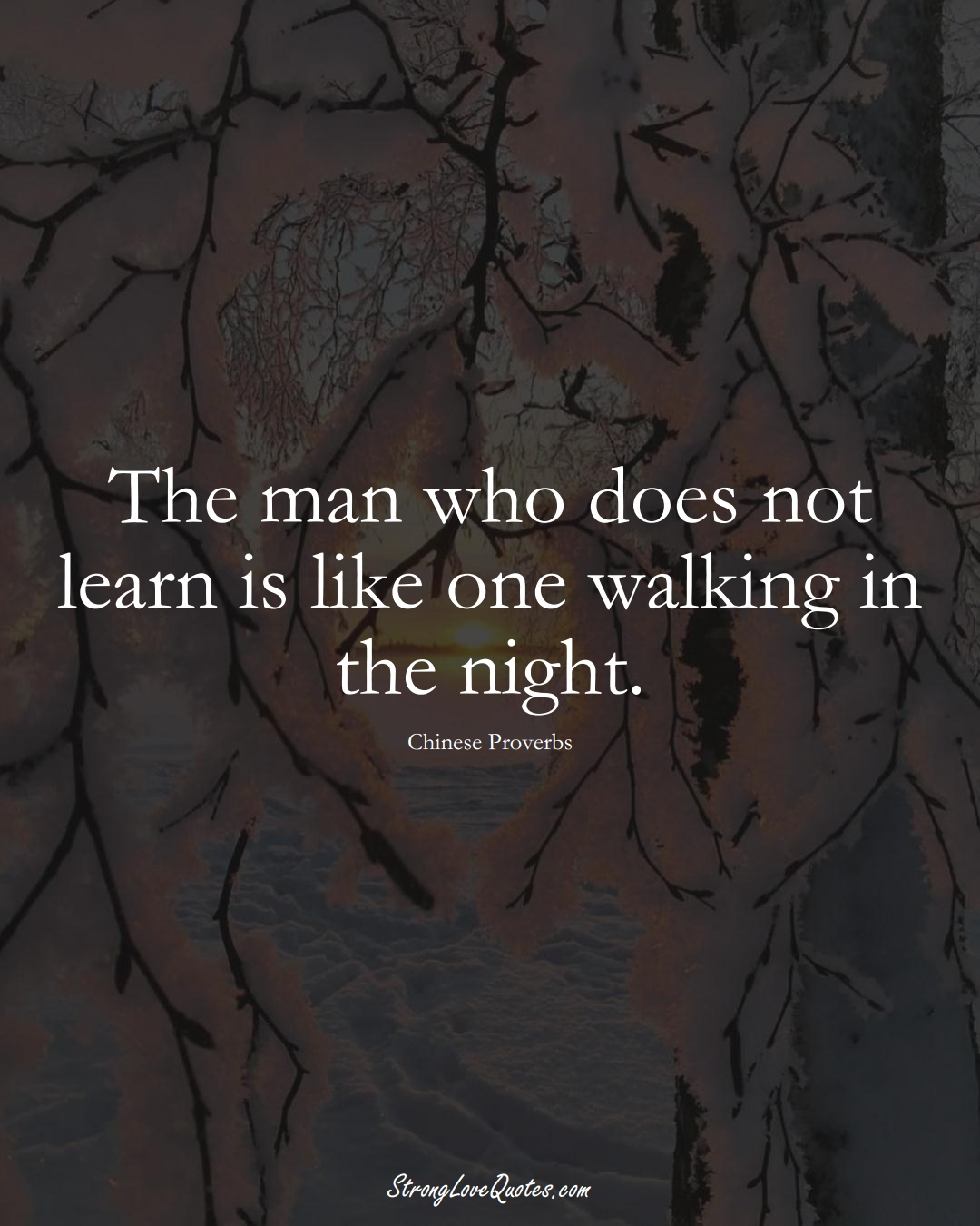 The man who does not learn is like one walking in the night. (Chinese Sayings);  #AsianSayings