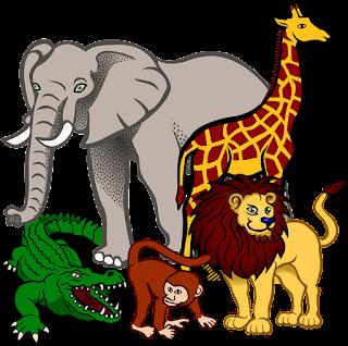 Kumpulan Kosakata Nama Hewan Dalam Bahasa Inggris dan Artinya