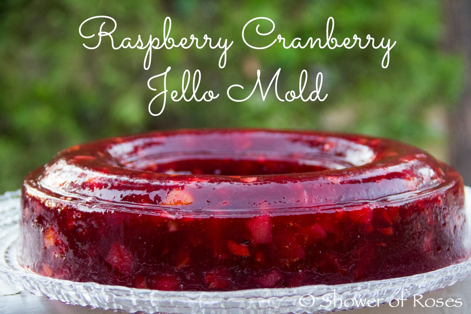 Shower Of Roses Our Festive Raspberry Cranberry Jello Mold