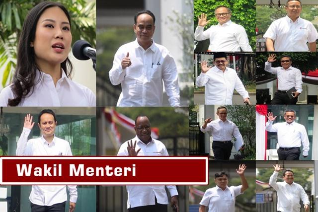 Wakil menteri Susunan kabinet Jokowi Jilid 2