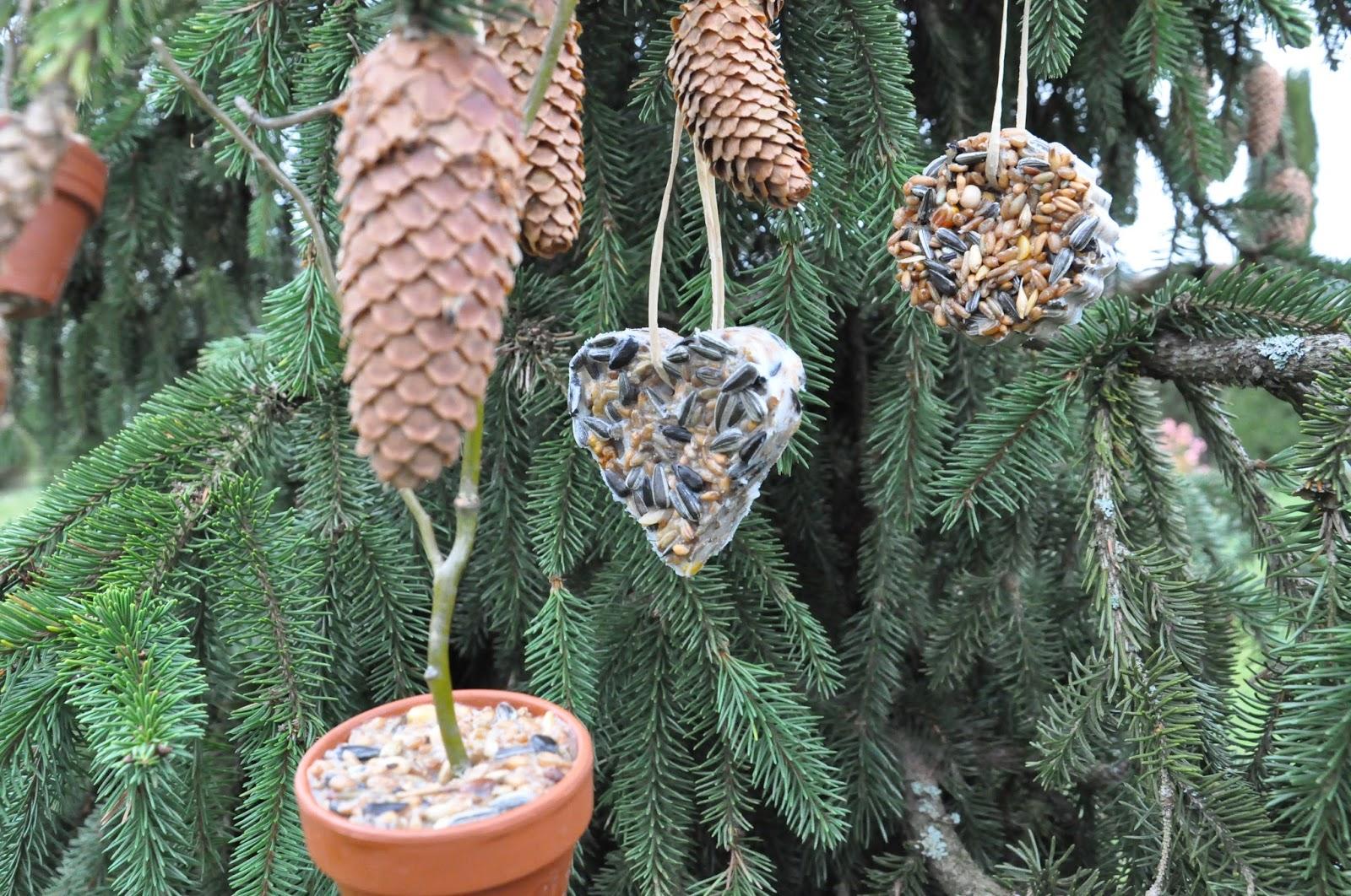 diy anh nger aus vogelfutter bird seed feeders craftythingsbyverena about verena food. Black Bedroom Furniture Sets. Home Design Ideas