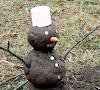 Zimowa susza – jakie mogą być skutki?