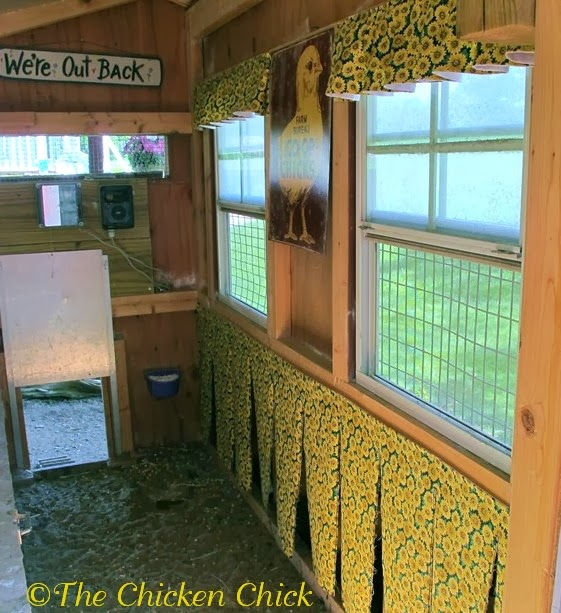 Hang nest box curtains for laying privacy to increase privacy, reduce stress and hide eggs from snack-seekers.