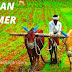 Indian Farmer - Indian farmer essay and images