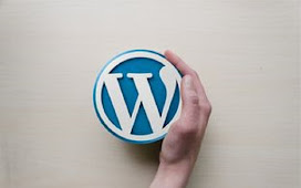 Top Tips For Learning More About Video And WordPress Plugins