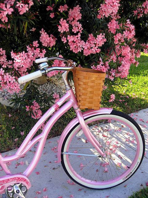 Ride in Pink