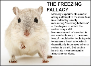 freezing behavior in rodents