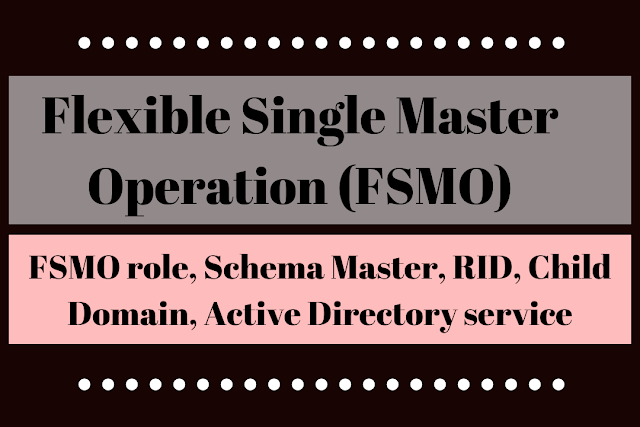 What is a Flexible Single Master Operation (FSMO) | Roles of FSMO