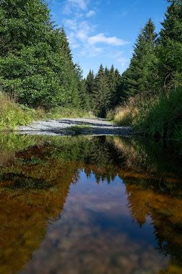 Drei-Täler-Tour und Stadtrundgang Bad Harzburg  Wandern im Harz  Eckerstausee - Radauwasserfall 18