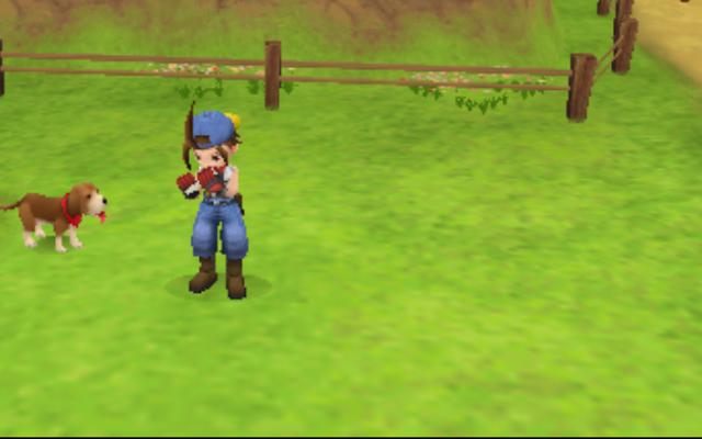 [Game PSP] Mendapatkan Anjing dan Menambah Hati Di Harvest Moon Hero of Leaf Valley