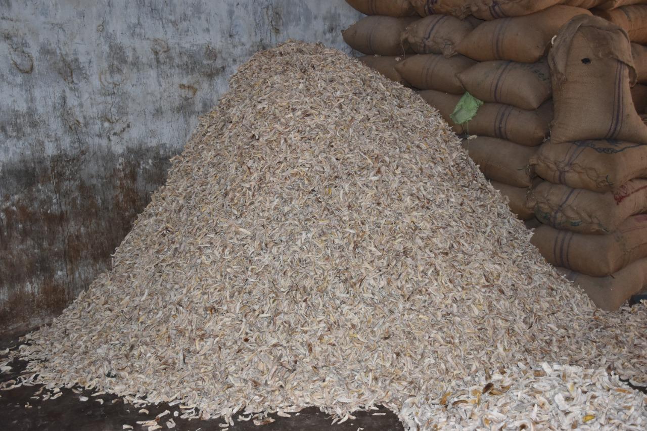 Raw Mango Product
