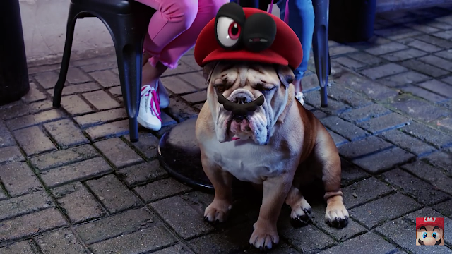 Super Mario Odyssey pug dog captured mustache Cappy real life hat cap