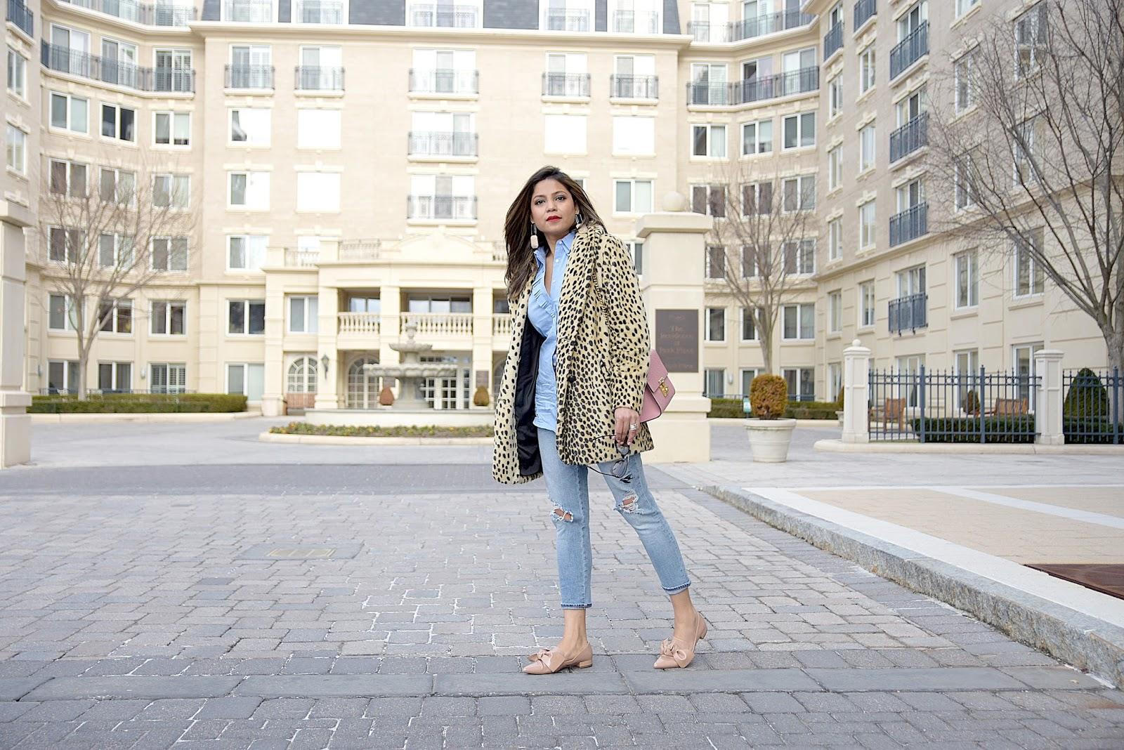 leopard coat , gap jeans, banana republic ruffle top, zara bow flats