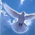 19 СІЧНЯ – ХРЕЩЕННЯ ГОСПОДНЄ: НАРОДНІ ПРИКМЕТИ І ТРАДИЦІЇ
