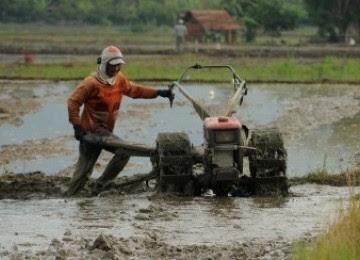 Petunjuk Perhitungan Biaya Pokok pada Usaha Penyewaan Traktor Tangan