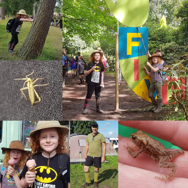 Just So Festival Review 2019 Sunday glorious weather collage ice cream insects frogs