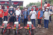 Bupati FDW Hadiri  Penanaman Perdana Korporasi Benih Jagung Hibrida Varietas JH 37