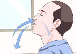 Hasil gambar untuk frekuensi pernafasan