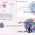Lettre ouverte au procureur de la république de l'UNION DES COMORES