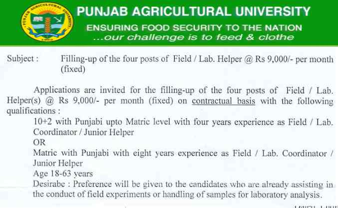 Punjab Agricultural University PAU Recruitment 2017