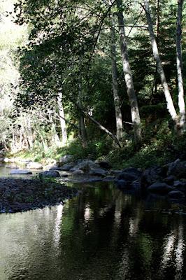Big Sur river at Glen Oaks log cabin hotel, Big Sur California - luxury travel blog